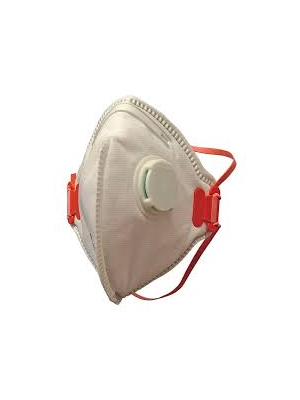 Mask Pro3 L FFP3 Disposable Asbestos Masks (Pack of 10)
